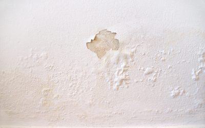 3 Small Signs That Your House Has a Big Problem